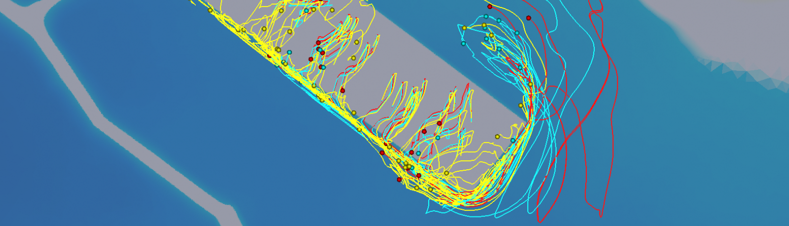 Tsunami modelling in estuaries